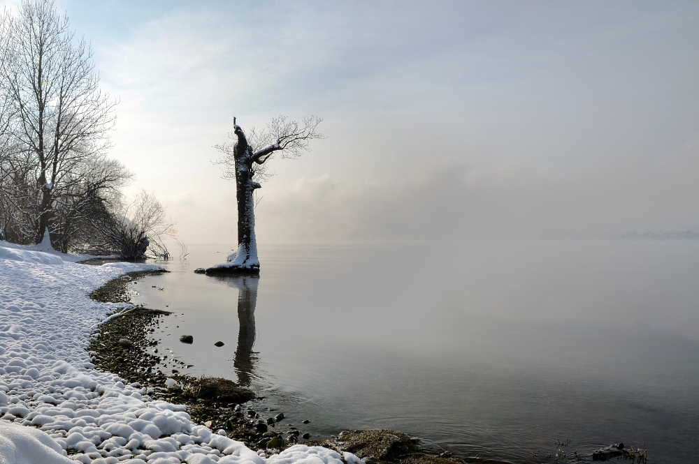 Greifensee Januar 2013